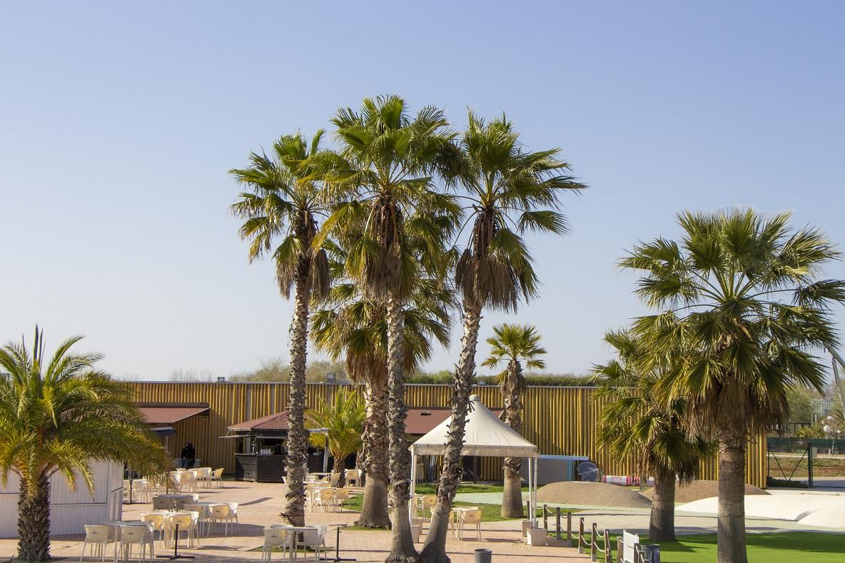 vista de la entrada Playas Zaragoza